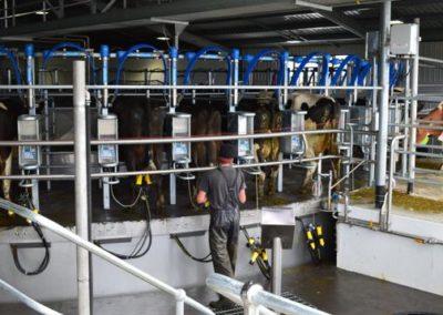 Clovelly Farms